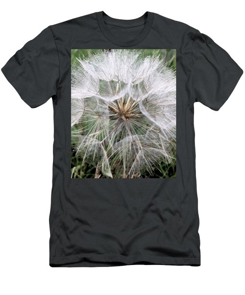 Dandelion Seed Head  Men's T-Shirt (Slim Fit) by Kathy Spall