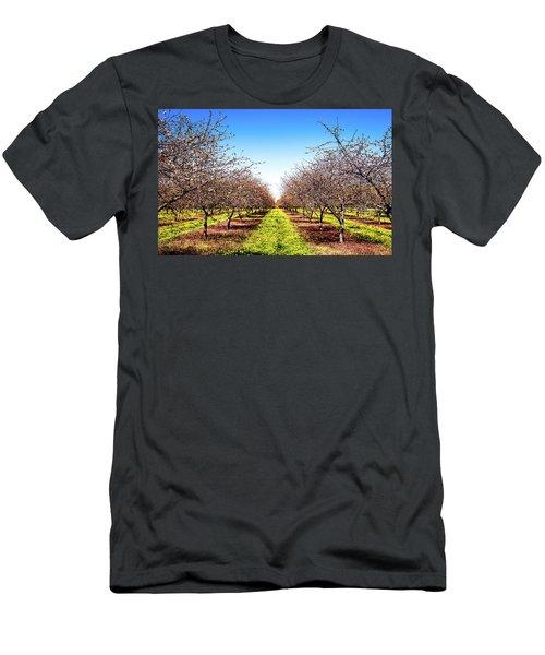 Men's T-Shirt (Athletic Fit) featuring the photograph Dandelion Stripes by Onyonet  Photo Studios