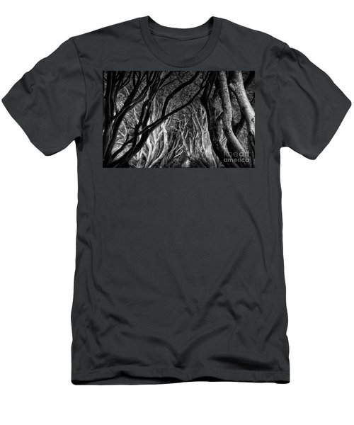 Dark Hedges Kings Road Men's T-Shirt (Athletic Fit)