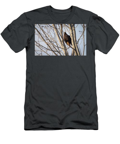 Men's T-Shirt (Athletic Fit) featuring the photograph Dark-morph Western Red-tailed Hawks by Ricky L Jones
