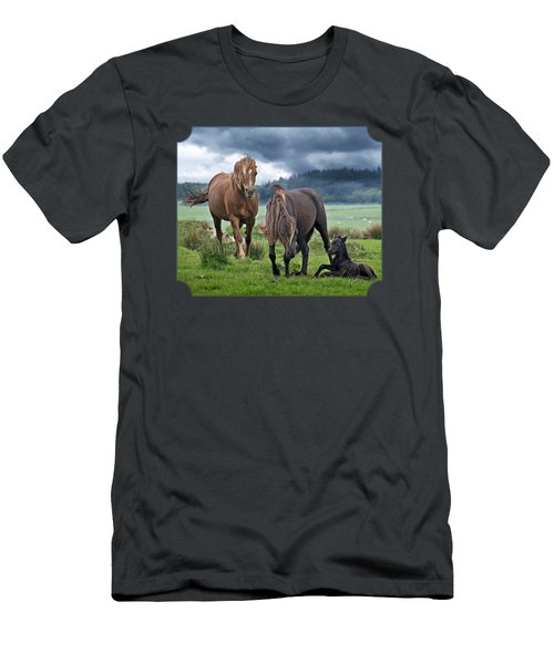Dartmoor Ponies Men's T-Shirt (Athletic Fit)