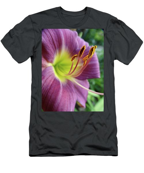Daylilies In Summer Men's T-Shirt (Slim Fit) by Rebecca Overton