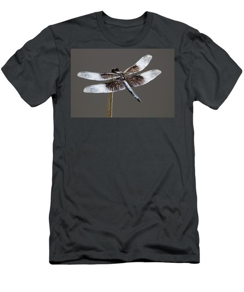 Dazzling Dragonfly Men's T-Shirt (Athletic Fit)