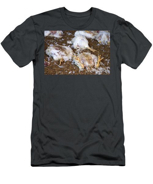 Dead Chickens Men's T-Shirt (Athletic Fit)