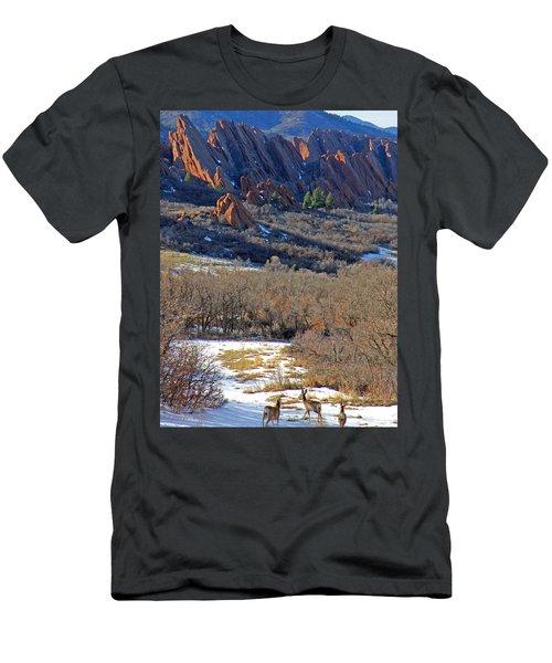 Deer At Roxborough Men's T-Shirt (Athletic Fit)