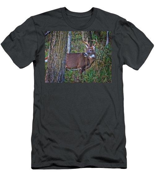 Deer In The Woods Men's T-Shirt (Athletic Fit)