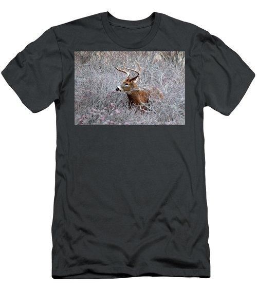 Deer On A Frosty Morning  Men's T-Shirt (Slim Fit) by Nancy Landry
