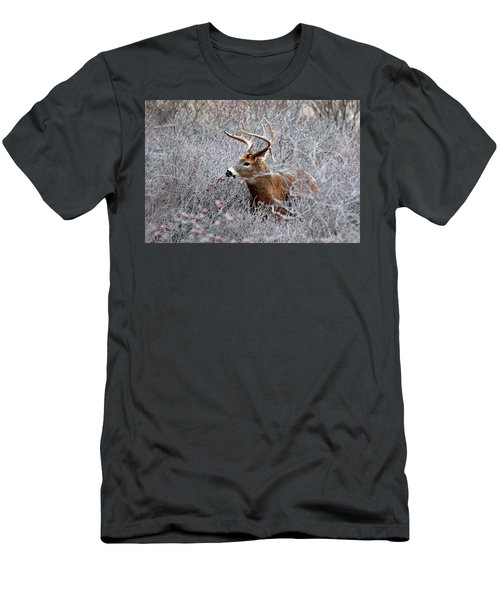 Deer On A Frosty Morning  Men's T-Shirt (Athletic Fit)