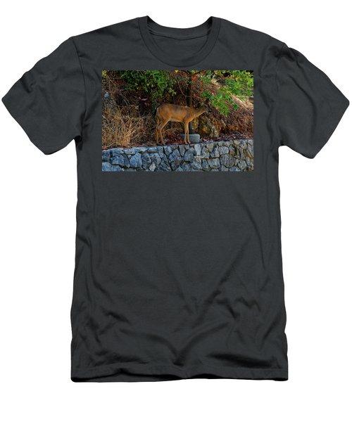 Deer Men's T-Shirt (Athletic Fit)