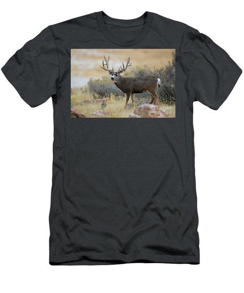 Desert Beast Men's T-Shirt (Athletic Fit)