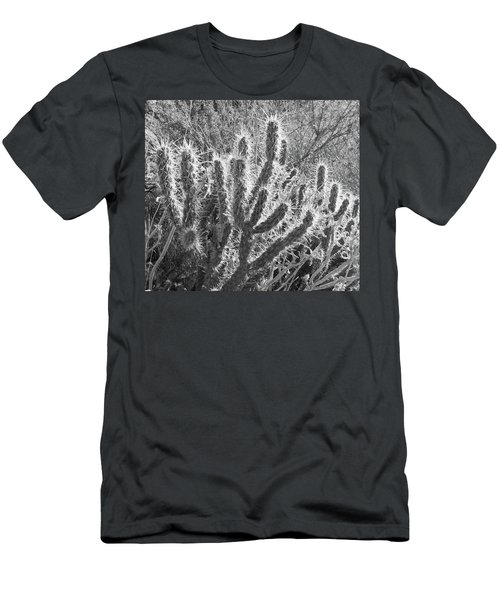 Men's T-Shirt (Athletic Fit) featuring the photograph Desert Cactus by Frank DiMarco
