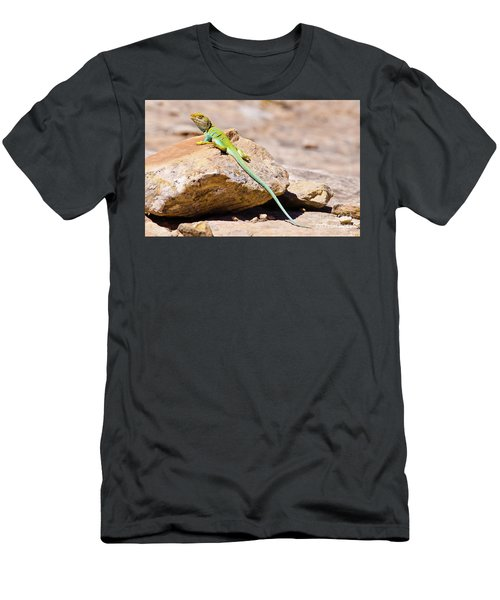 Desert Colors Men's T-Shirt (Athletic Fit)