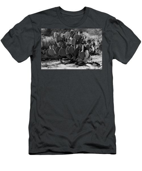 Desert Prickly-pear No7 Men's T-Shirt (Athletic Fit)