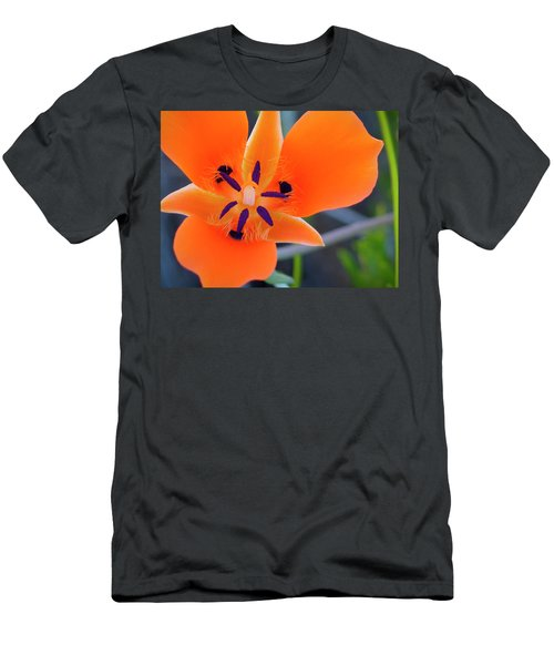 Desert Wildflower Men's T-Shirt (Athletic Fit)