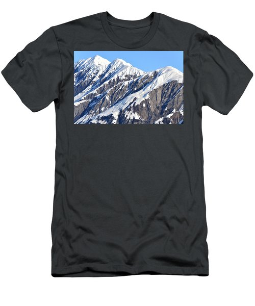 Devils Food With Frosting - Wrangall St. Elias Men's T-Shirt (Athletic Fit)