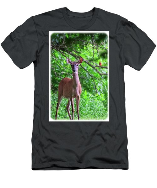Doe And Cardinal Men's T-Shirt (Athletic Fit)