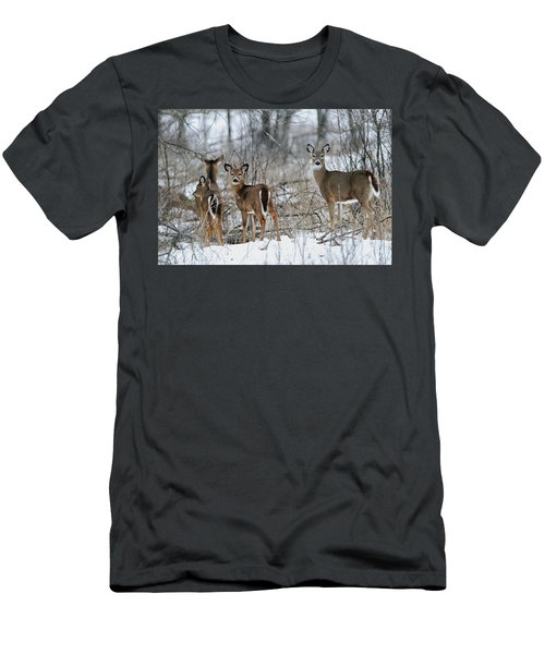 Does And Fawns Men's T-Shirt (Slim Fit) by Brook Burling
