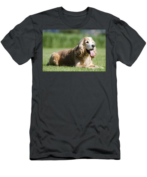 Dog Lying Down On The Green Grass Men's T-Shirt (Athletic Fit)