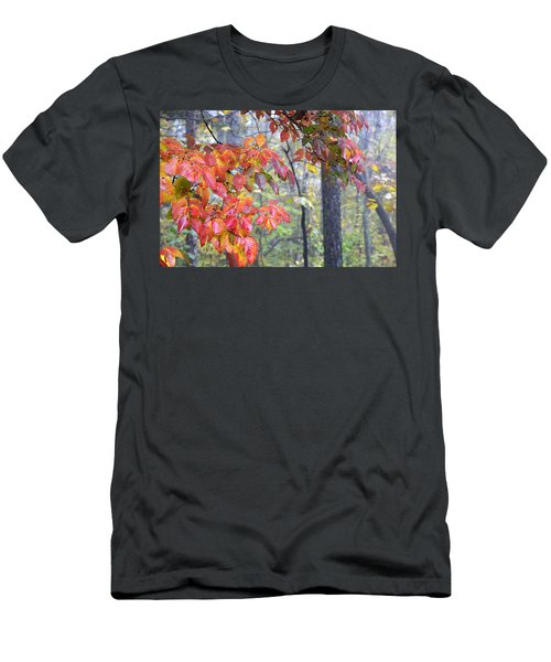 Dogwood 2 Men's T-Shirt (Athletic Fit)