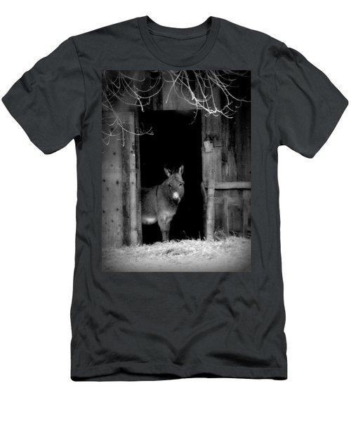 Donkey In The Doorway Men's T-Shirt (Slim Fit) by Michael Dohnalek