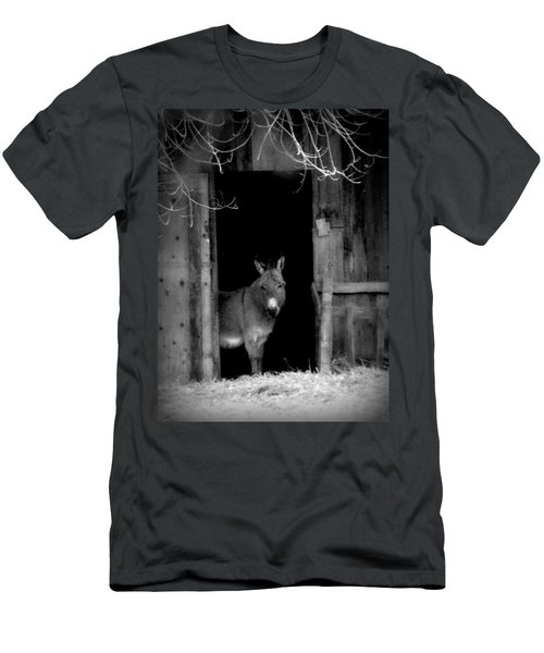 Donkey In The Doorway Men's T-Shirt (Athletic Fit)