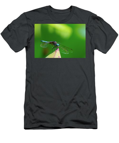 Dragonfly On Lotus Bud Men's T-Shirt (Athletic Fit)