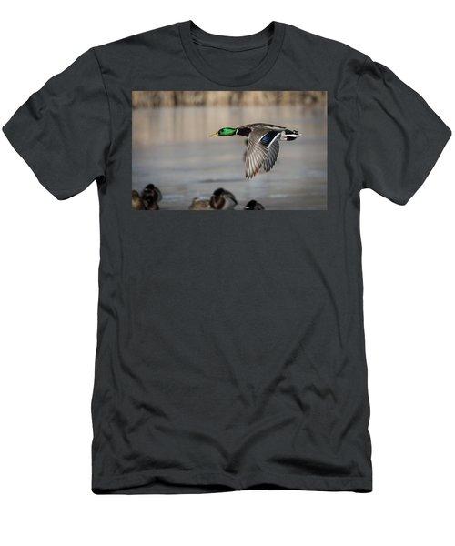 Drake Mallard 2018-2 Men's T-Shirt (Athletic Fit)