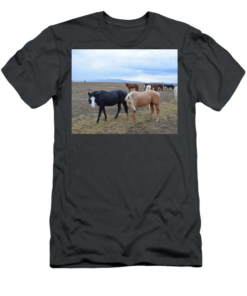 Dreaming Of Wild Horses Men's T-Shirt (Athletic Fit)
