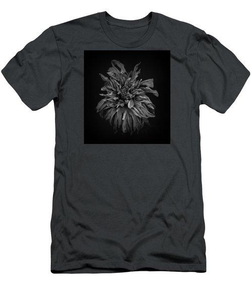 Dried Dahlia 2 Men's T-Shirt (Slim Fit) by Simone Ochrym