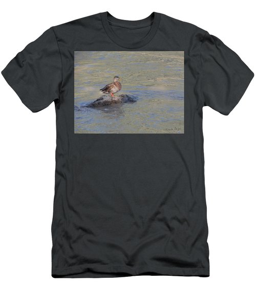 Duck Alone On The Rock Men's T-Shirt (Athletic Fit)