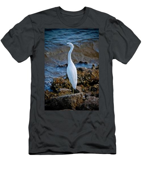 Eager Egret Men's T-Shirt (Slim Fit) by DigiArt Diaries by Vicky B Fuller