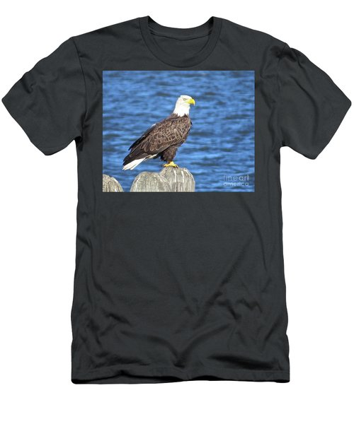 Eagle At East Point  Men's T-Shirt (Slim Fit) by Nancy Patterson