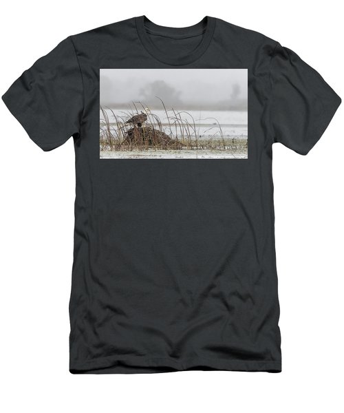 Eagle Hunts For Coots And Ducks Men's T-Shirt (Athletic Fit)