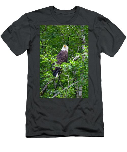 Eagle In Tree Men's T-Shirt (Athletic Fit)