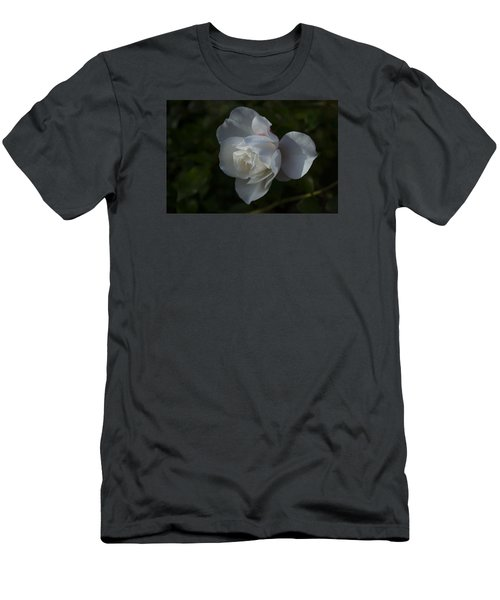 Early Morning Rose Men's T-Shirt (Slim Fit) by Dan Hefle