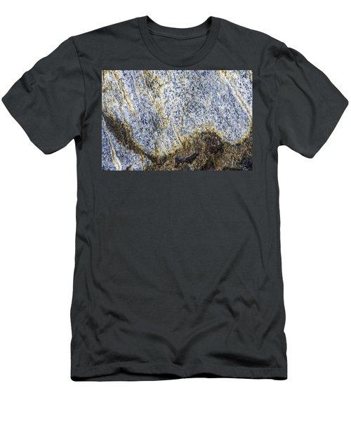 Earth Portrait 001-035 Men's T-Shirt (Athletic Fit)