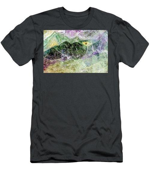 Earth Portrait 268 Men's T-Shirt (Athletic Fit)