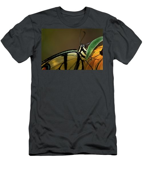 Eastern Tiger Swallowtail Butterfly Men's T-Shirt (Athletic Fit)