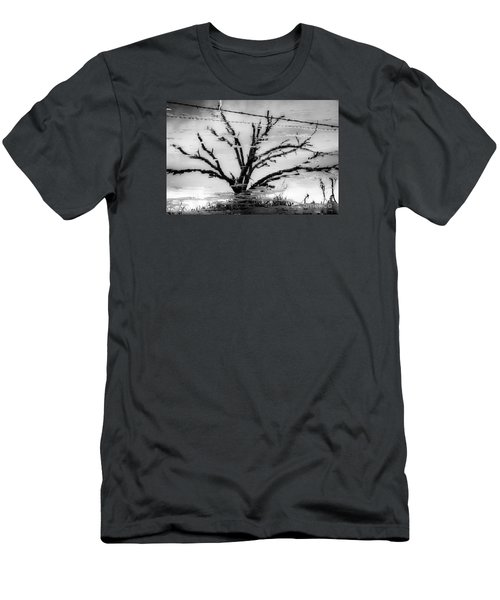 Eerie Reflections Men's T-Shirt (Athletic Fit)