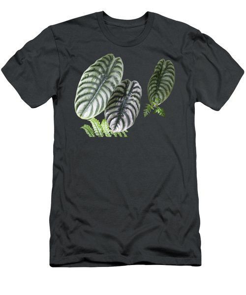 Elephant Ears Transparency Men's T-Shirt (Athletic Fit)