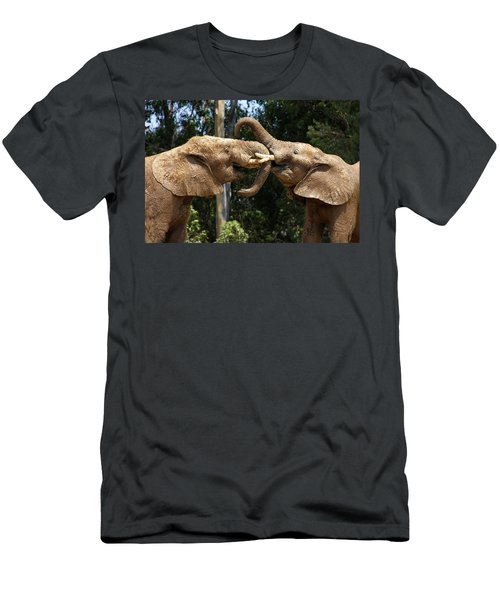 Elephant Play Men's T-Shirt (Athletic Fit)