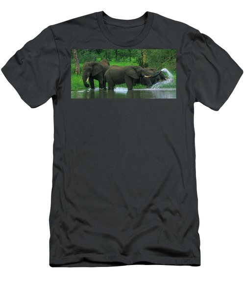 Elephant Shower Men's T-Shirt (Athletic Fit)