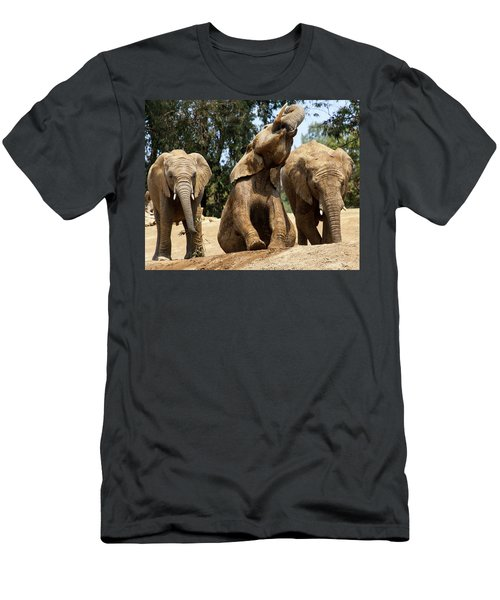 Elephants Men's T-Shirt (Athletic Fit)