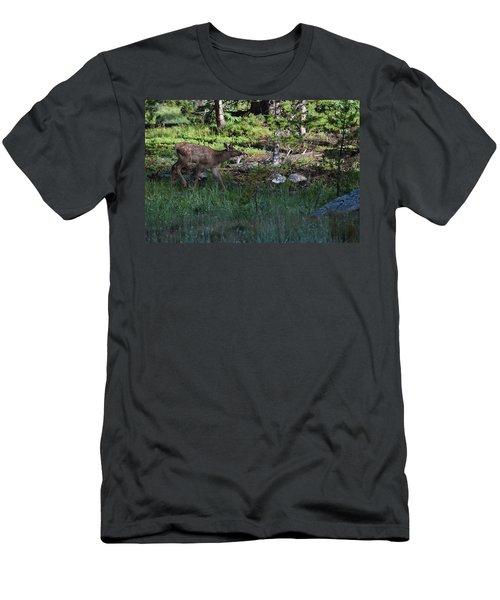 Baby Elk Rmnp Co Men's T-Shirt (Athletic Fit)