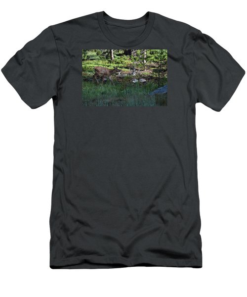 Baby Elk Rmnp Co Men's T-Shirt (Athletic Fit)