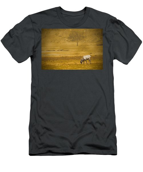 Elk Men's T-Shirt (Athletic Fit)