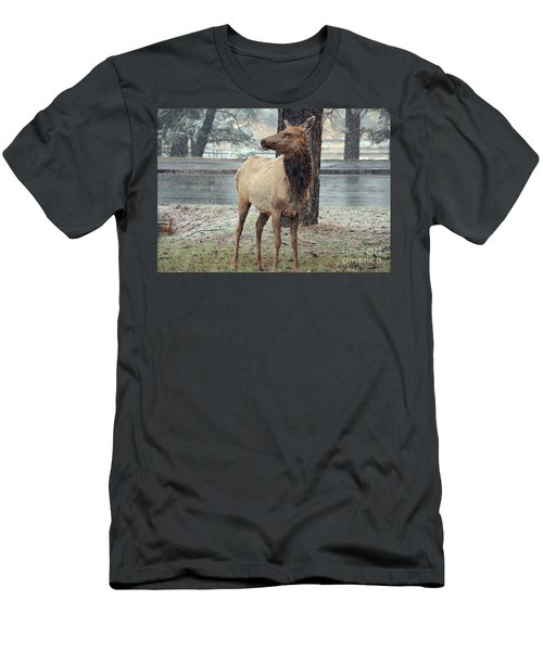 Elk In The Snow Men's T-Shirt (Slim Fit) by Debby Pueschel