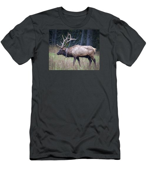 Men's T-Shirt (Slim Fit) featuring the photograph Elk by Tyson and Kathy Smith