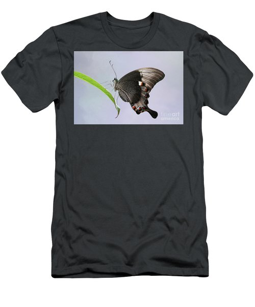 Emerald Peacock Swallowtail Butterfly V2 Men's T-Shirt (Athletic Fit)
