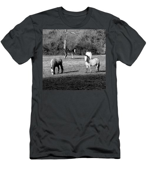 English Horses Men's T-Shirt (Athletic Fit)